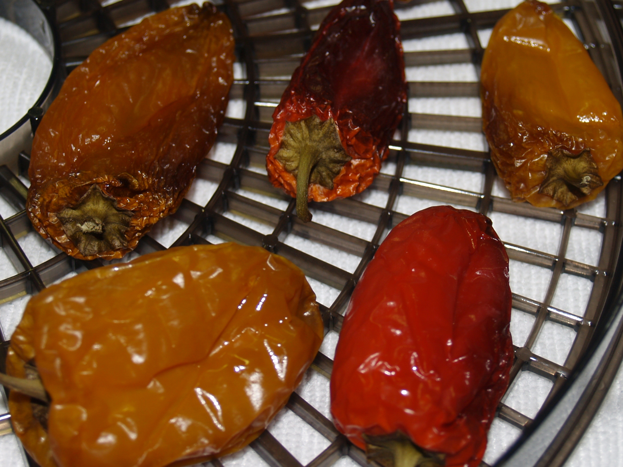 Dehydrating Peppers after Smoking Them