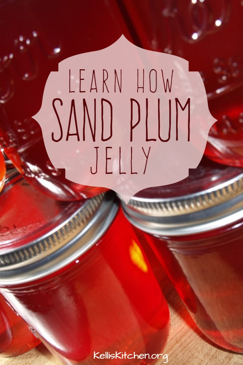 Sand or Chickasaw Plum Jam and Jelly via @KitchenKelli