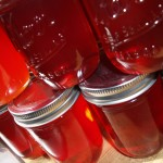 Sand or Chickasaw Plum Jam and Jelly