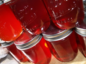 Sand or Chickasaw Plum Jam
