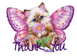 thank-you-kitty-and-butterfly.jpg