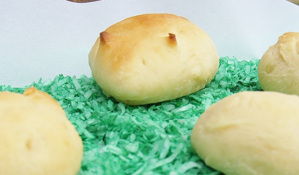 Bunny Rolls – Only NOT! Bust the Bunny Rolls Myth.