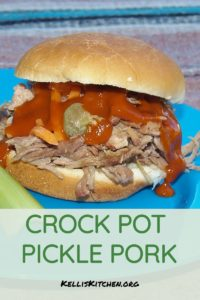 CROCK POT PICKLE PORK