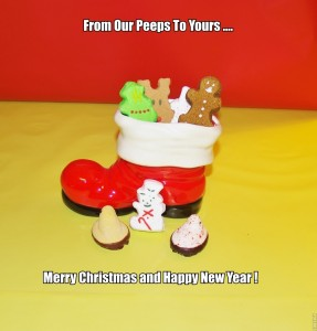 Merry Christmas Peeps!