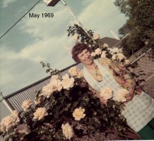 Aunt Irene roses