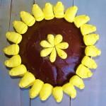 Chocolate Peeps Cake