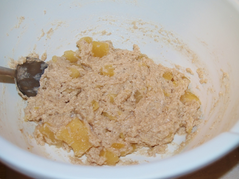 Easy Apple Fritters – Kellis Kitchen