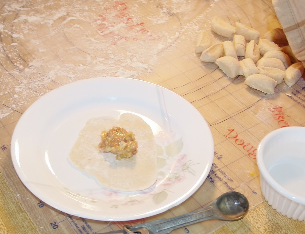 Potstickers – Kellis Kitchen