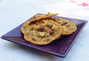 Graham Cracker Chocolate Chip Cookies #cookieofthemonth