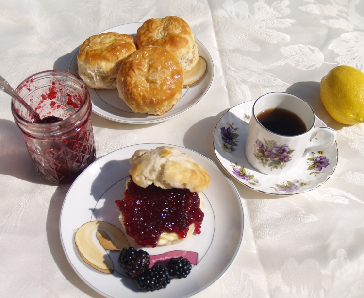 Seedless Blackberry Jam and Blackberry Cobbler