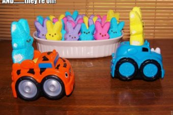 Play With Your Food: Peeps Dioramas